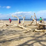 Jekyll Island Family Fun Guide